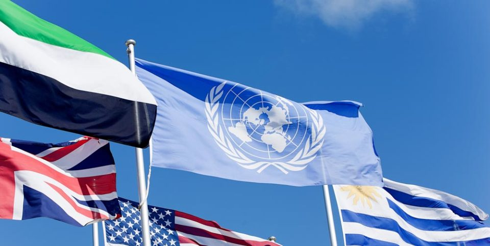 The UN Logo Design on a Flag